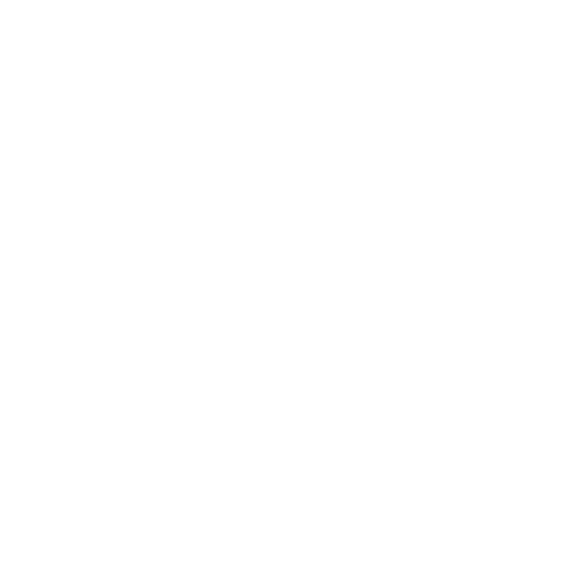 The Wellness Plan Logo